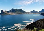 Full-Day Cape Peninsula and Cape of Good Hope Tour from Cape Town