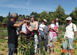 Lyon Educational Tour: Eco-Friendly Gardening