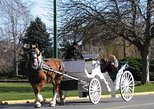 30-Minute Victoria Carriage Tour Including James Bay