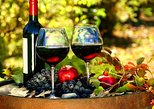Private Tour: 4-Hour Sightseeing and Wine Tasting Tour in Nice