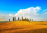 things to do in montalcino | take a day trip to the tuscan wine country