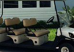 Street Legal Golf Cart Rental in Fort Lauderdale