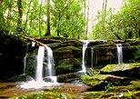 Great Smoky Mountains Waterfall Adventure