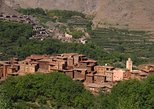 Atlas Mountains Day Tour from Marrakech, Including Camel Ride and Berber Guest House
