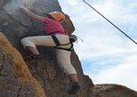 All-Day Rock Climbing Adventure in Joshua Tree National Park