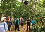 Limon Highlights 6 in 1 Private Tour