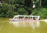 Shore Excursion: Tortuguero Canal Eco Cruise and Banana Plantation