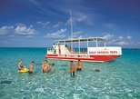 Glass-Bottom Boat Tour to Stingray City
