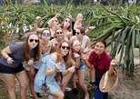 Best Experienced Mekong Delta 1 Day Small Group from Ho Chi Minh City