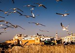 Private Full Day Tour to Essaouira Mogador from Marrakesh