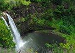Papeete Inner Island Full-Day Jeep Safari