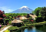 1-Day Mt Fuji Bus Tour with 4-D Mt.Fuji movie Ride and Ninja Experience