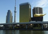 Half Day Sightseeing Tour in Tokyo