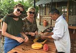 Cocoa Farm and Chocolate Tour
