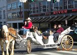 Private Downtown Nashville Horse and Carriage Ride