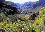 Exclusive tour to Gran Canaria treasures