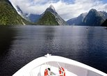 Milford Sound Personal Private Tour and Boat Cruise