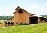 Amish Community Visit,Hiking,winetasting . Horseback,or rafting cost extra