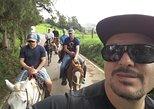 Best Horseback Adventure from Medellin