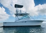 Private Charter 32ft Express Cruiser 'Escape Hatch'