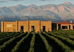 Wine Tour Experience in Uco Valley from Mendoza (full day), Mendoza, ARGENTINA