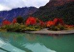 Boat navigation to Puerto Blest, Los Cantaros Falls & Frias Lake