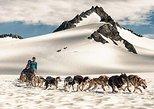Helicopter Glacier Dog Sledding