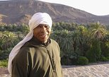 Zagora full day tour and Camel ride