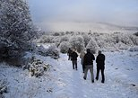 South America - Argentina: Winter Full Day: National Park plus Beagle Channel Navigation
