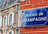 Private day tour to Champagne from Paris