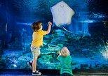 SeaLife London Aquarium with Thames River Sightseeing Cruise