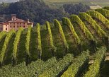 things to do in turin italy | take a private tour of piedmont wine tasting of the barolo region