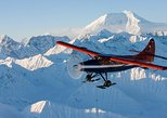 Grand Denali Flightseeing tour from Talkeetna