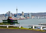 Auckland City Small-Group Morning Discovery Tour