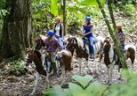 Horseback riding and cultural Maleku Indigenous Reserve in Arenal La Fortuna