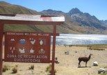 Querococha Lake and Chavin Ruins Private Tour from Huaraz
