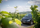 Half-Day Alsace Wine Tasting Small-Group Tour from Strasbourg