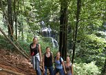 Browns-Mountain Day Trip from Paramaribo