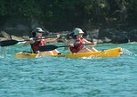 Damas Island Kayak Tour with Lunch from Manuel Antonio