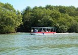Damas Island Tour by Boat from Manuel Antonio
