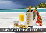 Morning Mimosa or Champagne Sunset Cruise