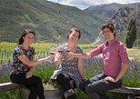 Central Otago Wine Tour from Queenstown