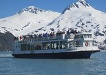 Portage Glacier Cruise and Wildlife Explorer Tour