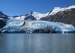 Portage Glacier Cruise a Self-Guided Tour