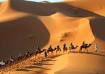 2 Day Desert Tour From Marrakech through the Atlas Mountains & Camel ride