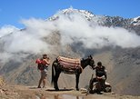 Berber Trails and Atlas Mountains Day Trip including Lunch from Marrakech