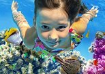 From Hurghada: Giftun Islands Full-Day Snorkeling Tour