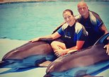 Swim with Dolphins Tour Hurghada