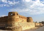 Half Day Private Tour: Trail of Delmon Civilization from Manama