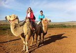 Overnight Semi-Gobi Tour with Nomadic HomeStay